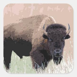 Búfalo/bisonte Pegatina Cuadrada