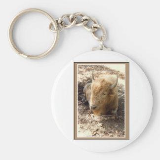 Búfalo blanco llavero redondo tipo pin