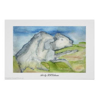 Búfalo blanco poster