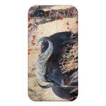 búfalo de agua iPhone 4 coberturas