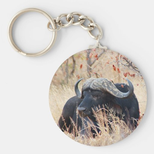 búfalo de agua llavero personalizado