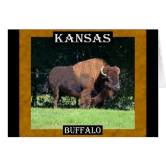 Búfalo de Kansas (Kansas, Oklahoma, Wyoming) Tarjeta De Felicitación