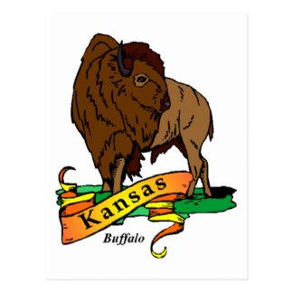 Búfalo de Kansas Tarjeta Postal