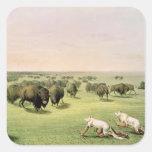 Búfalo de la caza camuflado pegatina cuadrada