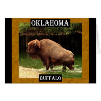 Búfalo de Oklahoma (Kansas, Oklahoma, Wyoming) Tarjeta De Felicitación