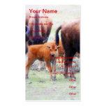 Búfalo del bebé - tarjeta del perfil del negocio tarjetas de visita