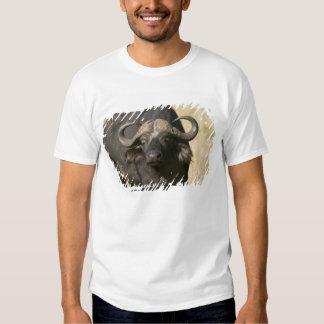 Búfalo del cabo (caffer) de Syncerus, Masai Mara Remeras