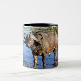 Búfalo del cabo por el © de Rowood Taza De Dos Tonos