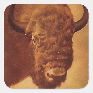 Búfalo del vintage pegatina cuadrada