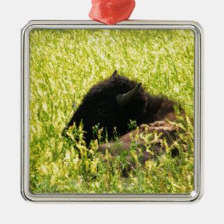 Búfalo en descanso ornamentos de navidad