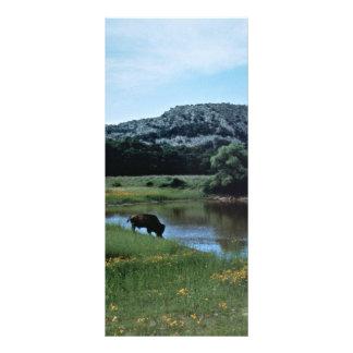 Búfalo en humedal tarjeta publicitaria personalizada