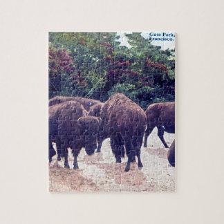 Búfalo en postal del vintage de Golden Gate Park Rompecabeza