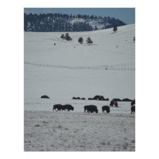 Búfalo en valle nevado con las montañas plantilla de membrete