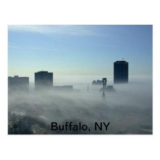 Búfalo hermoso, postal de NY