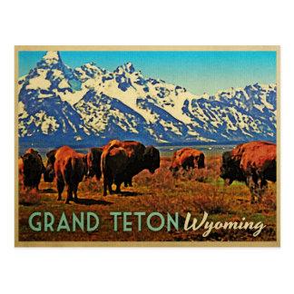 Búfalo magnífico de Teton Wyoming Tarjeta Postal