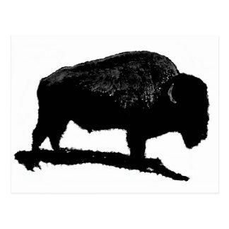 Búfalo negro y blanco postales