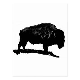 Búfalo negro y blanco tarjetas postales