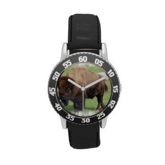 Búfalo norteamericano relojes de mano