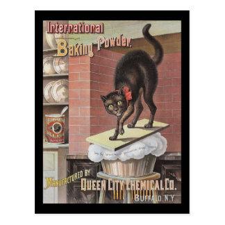 Búfalo Nueva York del bicarbonato de sosa del gato Postal