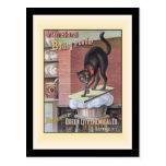 Búfalo Nueva York del bicarbonato de sosa del gato Tarjetas Postales