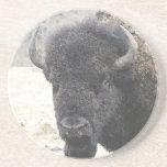 Búfalo Posavasos Personalizados