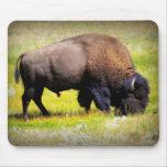 Búfalo que pasta tapete de ratones