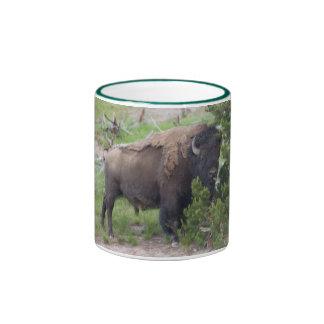 Búfalo que pega hacia fuera la lengua tazas de café