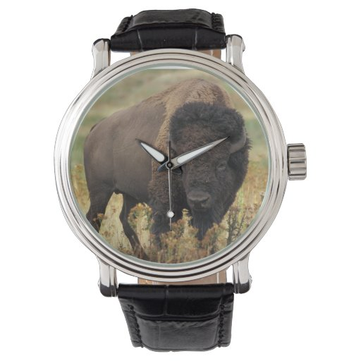 Búfalo Relojes De Mano
