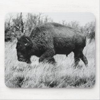 Búfalo solitario tapete de ratones