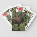 Búfalo y bosque corrientes, el diseño de los Bison Barajas De Cartas