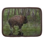 Búfalo y bosque corrientes, el diseño de los Bison Organizadores