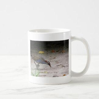 Buff-banded Rail, Gallirallus philippensis Coffee Mug