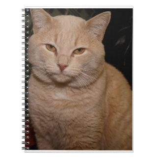 BUFF CAT NOTEBOOK
