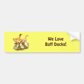 Buff Orpington Duck Family Bumper Sticker