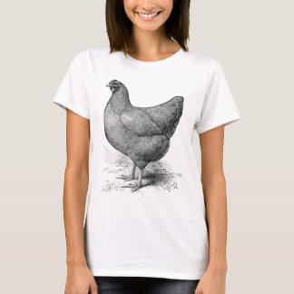 buff plymouth rock hen T-Shirt