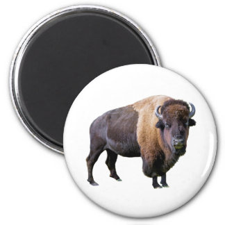 buffalo 2 inch round magnet