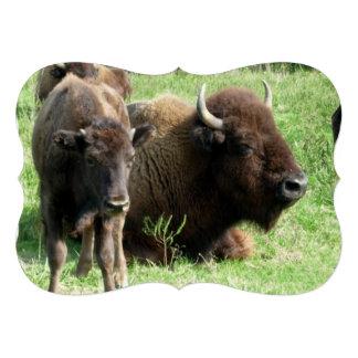 buffalo-4.jpg invitations