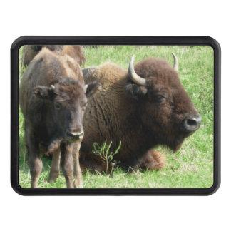 buffalo-4.jpg tapas de remolque