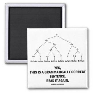 Buffalo (8 Times) Grammatically Correct Sentence 2 Inch Square Magnet