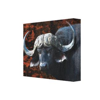Buffalo African safari animals art Canvas Print