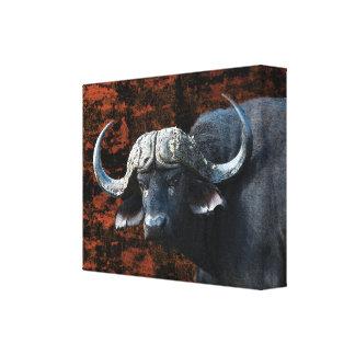 Buffalo African safari animals Gallery Wrap Canvas