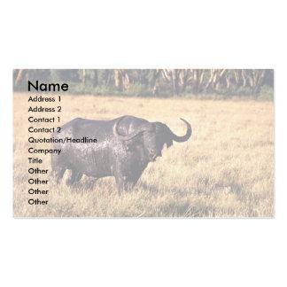 Buffalo after a mud bath business card template