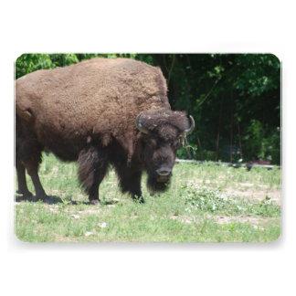 Buffalo and Bison Custom Invitation