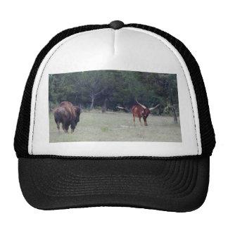 Buffalo and Longhorn Trucker Hat