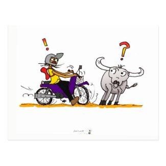 Buffalo and motorbike colorful drawing postcard