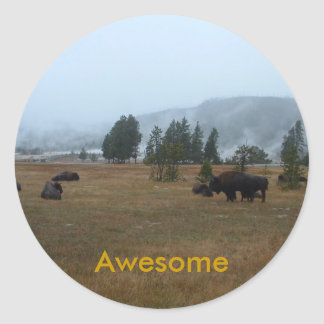 Buffalo Awesome Sticker
