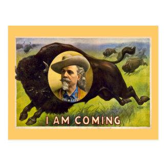 Buffalo Bill Vintage Advertisment circa 1900 Postcard