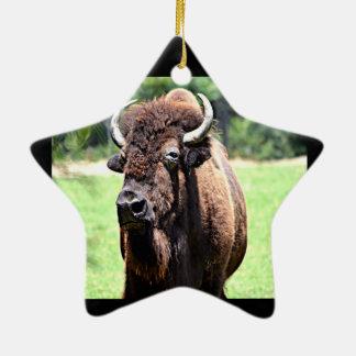 Buffalo (Bison) Ceramic Ornament