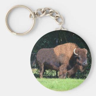 Buffalo (Bison) Kansas, Oklahoma, Wyoming Basic Round Button Keychain