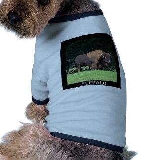Buffalo (Bison) Kansas, Oklahoma, Wyoming Pet T Shirt